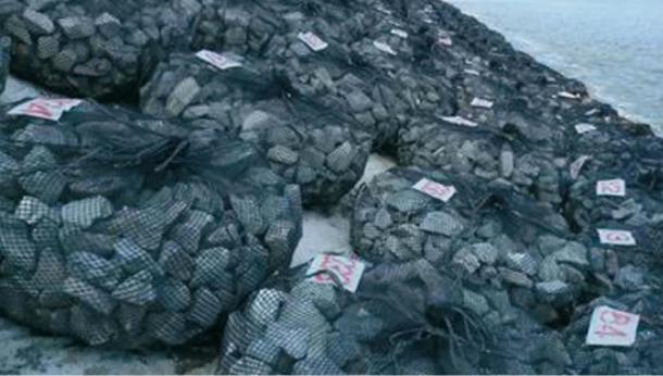 袋型根固め工法用袋材・エコサンクネット